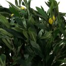 Kunstpflanze MARIUS 90