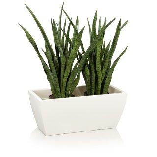 Pflanztrog ARTESA 33 Kunststoff weiß matt