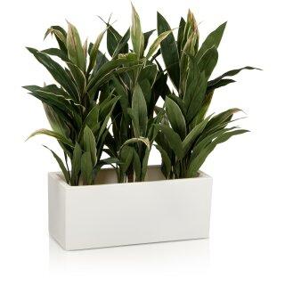 Pflanztrog MURO 25 Kunststoff weiß matt