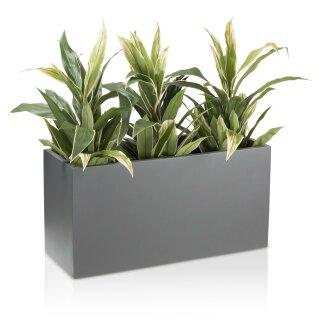 Pflanztrog VISIO 40 Fiberglas grau matt